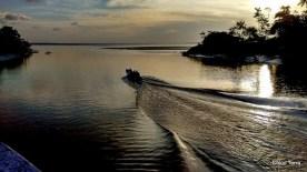 Exposição Amazônia - Chico Terra (69)
