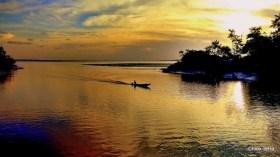 Exposição Amazônia - Chico Terra (72)