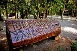 bioparque (32)