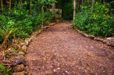 trilhas bioparque (1)