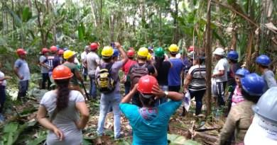 Agroextrativistas do Rio Araguari recebem curso de Manejo de Açaizais Nativos