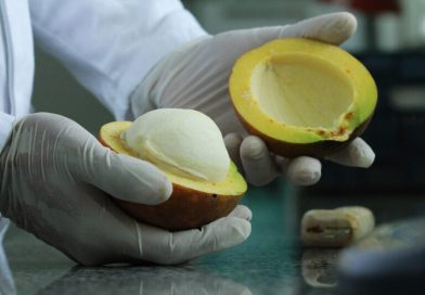 Mercado para frutas da Amazônia é apresentado por pesquisadora da Embrapa Amapá na pré-cúpula dos Sistemas Alimentares