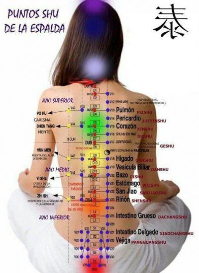 acupuntura el arte de curar