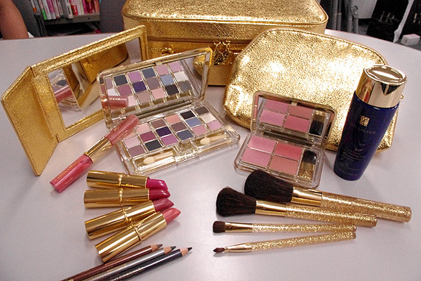 Estee Lauder Holiday 2010 Makeup Artist Professional Color