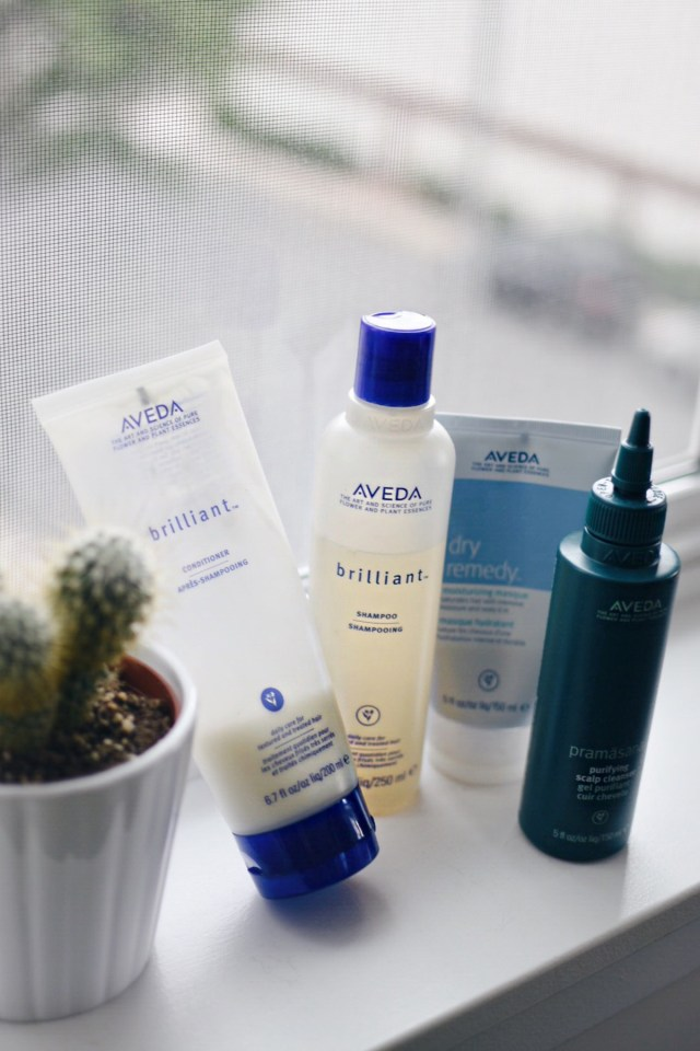 Aveda In shower must have products