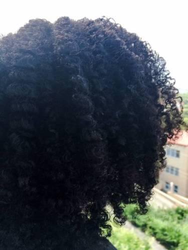 Natural hair Beija Flor Naturals Creme Brulee • chidibeauty.com