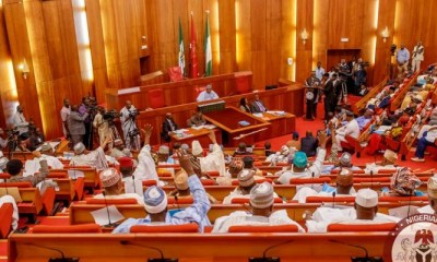 Senate shutdown session head to National Hospital over Dino, summons IGP