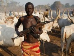 Fulani Herdsmen attacks: Six people killed, several houses burnt in Plateau state