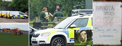 Tiger killed a female Zookeeper in a freak accident