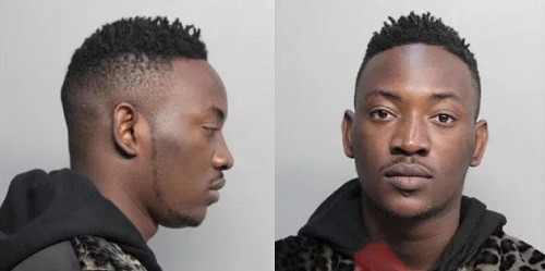 dammy krane arrested in US for grand theft