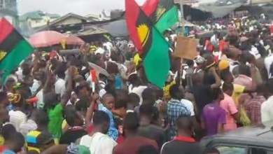 Northerners against The Igbos