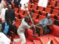 Mace stolen in the Senate is recovered by Police