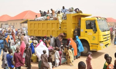 Photos: IDPs relocate to their homes in Borno