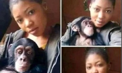 Viral Photo: 'I will rather date a monkey than a man, because monkeys will never cheat on me. It also satisfies me in bed'