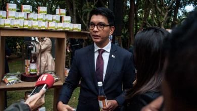 Madagascar slams WHO for not endorsing its herbal cure