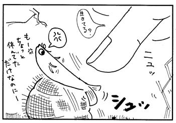 メダカ漫画2