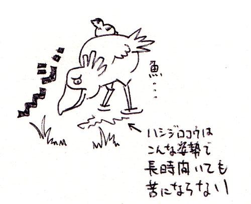 0113-2