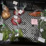 [お野菜]本日のお野菜(0616)