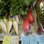 【無農薬野菜】29日も販売します