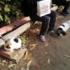 伏見稲荷で猫スポット