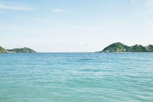 瑠璃 の 島