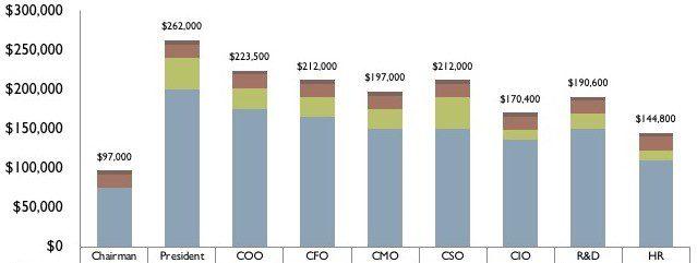compsummary6 - CEO and Senior Executive Compensation in Private Companies 2018-19
