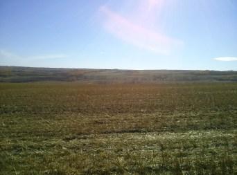 Farm land at Little Pine FN, Saskatchewan