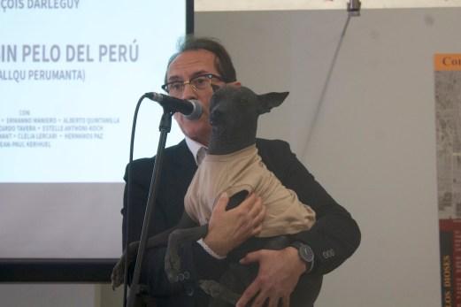 """Pedro-Santiago Allemant (realizador del filme) y Túpac (can del Museo de sitio de Pachacamac):presentación del filme """"El Perro sin Pelo del Perú"""" ( Perumanta Q'ala Allqu) en el Museo de Sitio de Pachacamac."""