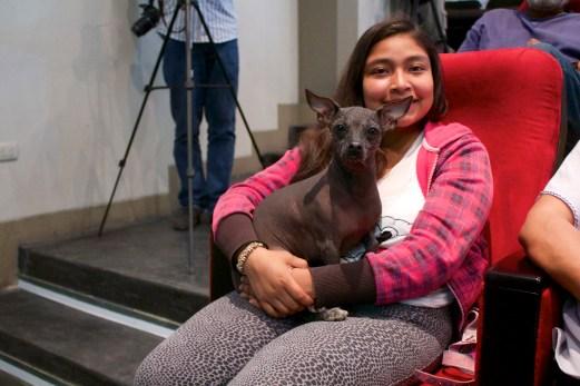 Participante de Túcume a la conferencia con su ejemplar Perro sin Pelo del Perú pequeña