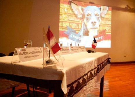 """""""El Perro sin pelo del Perú con pelo"""": Presentación en el Museo de sitio Túcume. Photo by Favio Jordi Martínez Nuntón / appp – adpp©2019."""