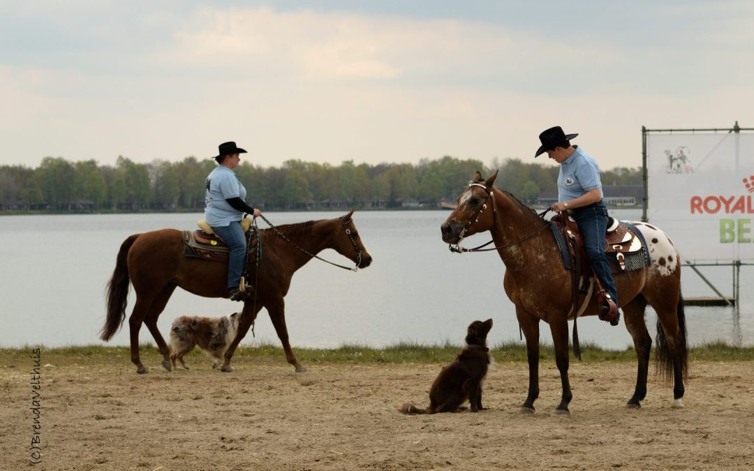 Horse and Dog trails demo's op het Animal Event 2017