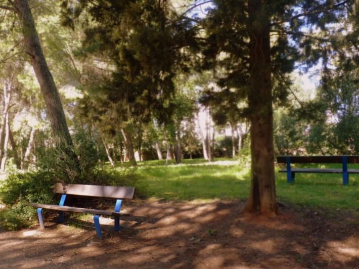 banc dans parc