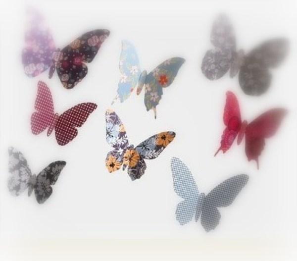 papillons-copie-1.jpg