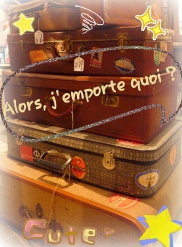 valises-decopic.jpg
