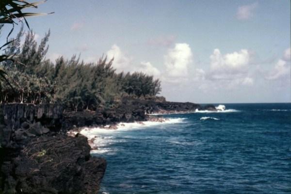 Réunion2