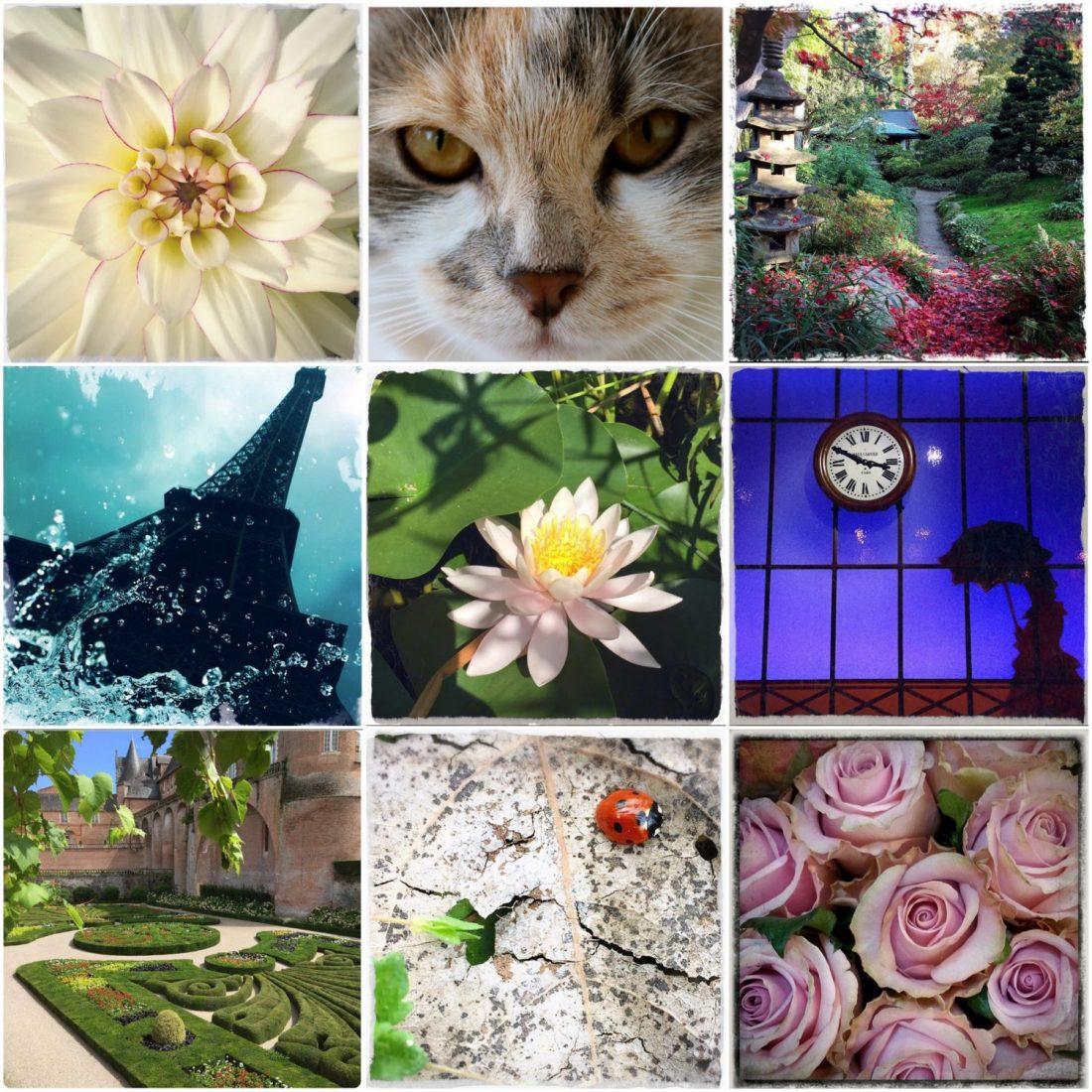 5 comptes Instagram que j'aime