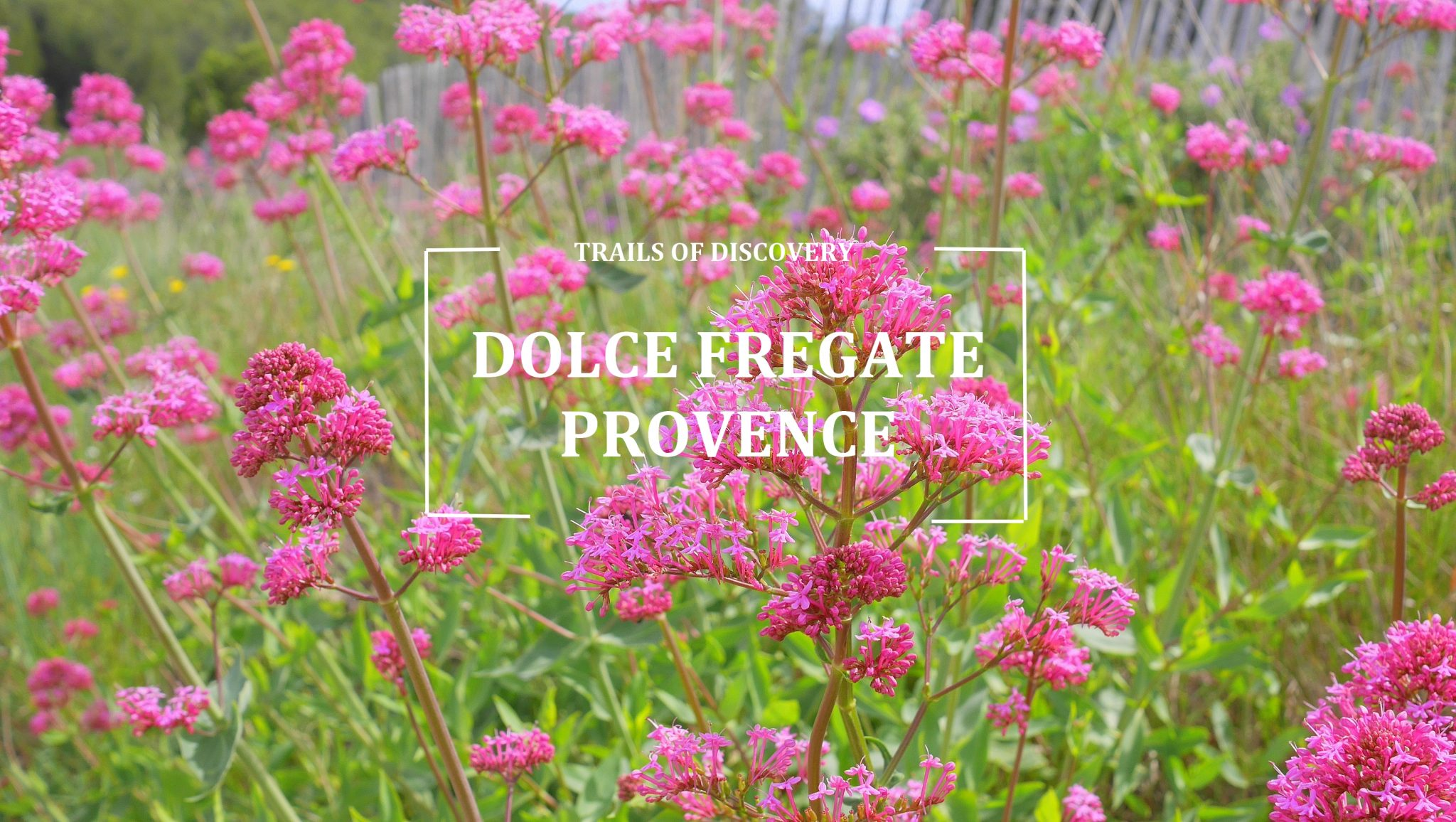 Trails-discovery-dolce-fregate-provence
