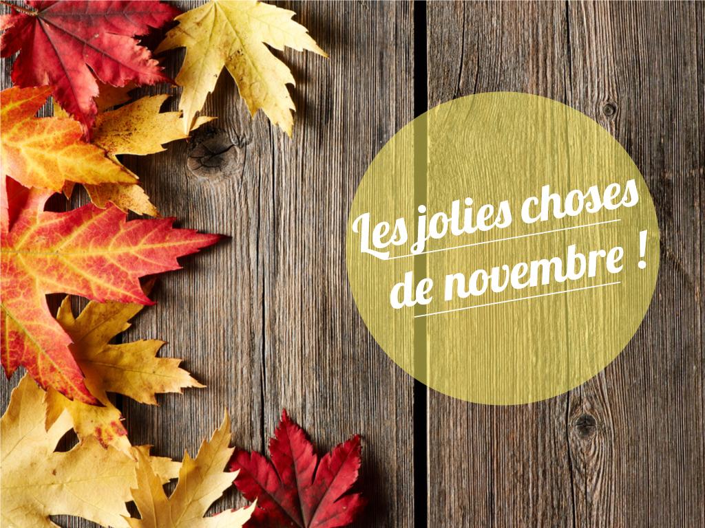 les-jolies-choses-de-novembre