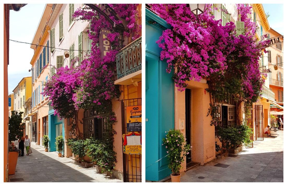 hyeres-bougainvillees