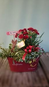商品番号【HY15030081】参考価格¥3240 サイズH34 W40 D32花鉢と観葉鉢のセットです。 当店オリジナル、人気のアイテムです。 母の日ようには、カーネーションの鉢が入ります。 通常は、その時入荷した良品質の花鉢・観葉鉢・小物類で可愛らしく アレンジしてお届け致します。