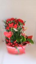 鉢と観葉鉢のセットです。 当店オリジナル、人気のアイテムです。 母の日用には、カーネーションの鉢が入ります。 通常は、その時入荷した良品質の花鉢・観葉鉢・小物類で可愛らしく アレンジしてお届け致します。