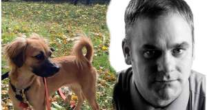 The rescue dog's DNA test reveals something strange!