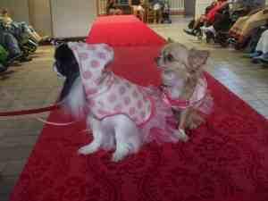 Hale Nani Nursing Home/Fashion Show @ Hale Nani Nursing Home