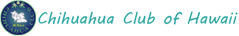 Chihuahua Club of Hawaii