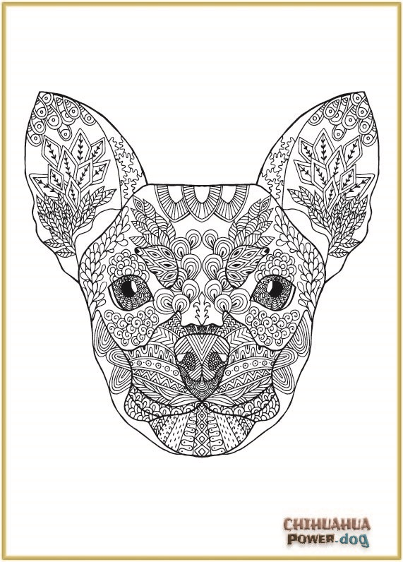Free Zen Chi Colouring Page
