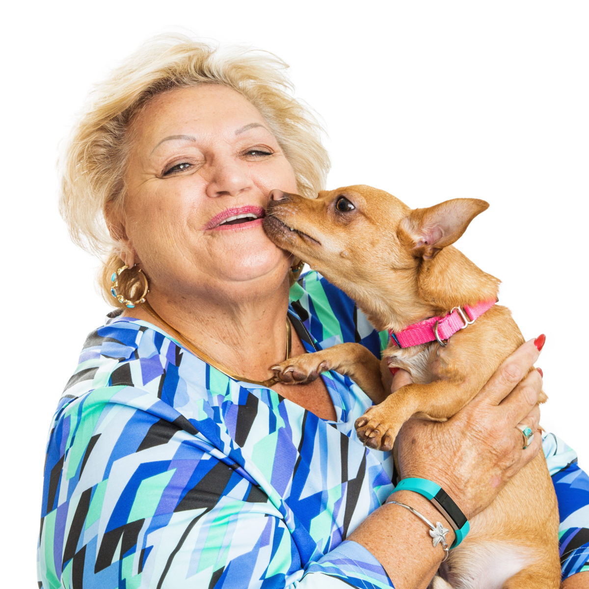 Ten Ways To Make Friends With the Mother in-law's Chihuahua