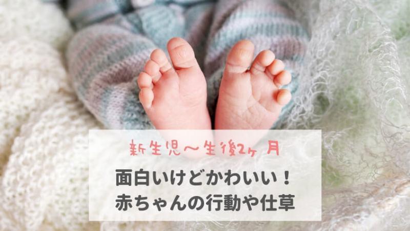 【新生児~生後2ヶ月】面白いけどかわいい!赤ちゃんの行動や仕草