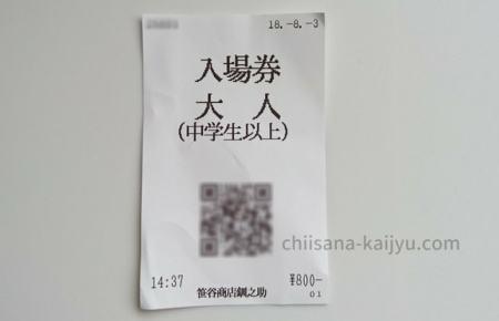 くしろ水族館「ぷくぷく」の入場券