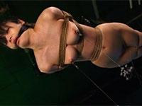 縛られて宙吊りにされ、乳首に重りを付けられて乳首調教されて失禁する雌豚