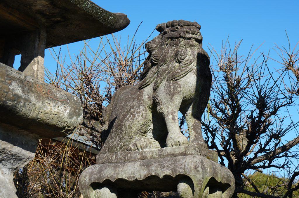 福岡県大牟田市鳥塚町88 三笠神社 強そうな狛犬 2019年正月